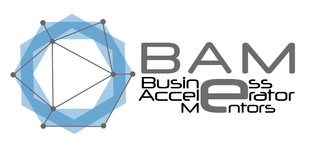 Business Accelerator Mentors